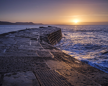 The harbour wall known as The Cobb enjoys a great deal of popularity and looks especially good in the light of dawn, Lyme Regis, Dorset, England, United Kingdom, Europe