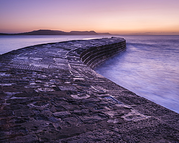 The harbour wall known as The Cobb in Lyme Regis, Dorset, England, United Kingdom, Europe