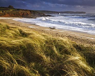 The beach at Thurlestone during a storm, near Kingsbridge, Devon, England, United Kingdom, Europe