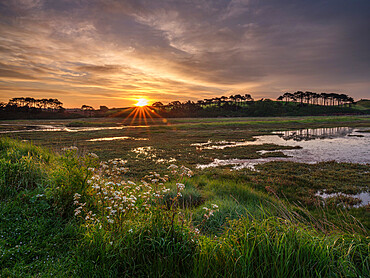 Sunrise across the salt marshes of the River Otter at Budleigh Salterton, Devon, UK