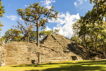 The Great Plaza, part of the Copan Ruins, a Mayan archaeological site, UNESCO World Heritage Site, Copan, Honduras, Central America