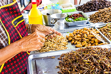 A market stall holder preparing an insect barbecue at Wat Chalong Temple in Phuket, Thailand, Southeast Asia, Asia