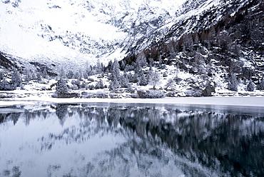 Aviolo Lake in Adamello Park, Vezza d'Oglio, Brescia province, Lombardy, Italy, Europe