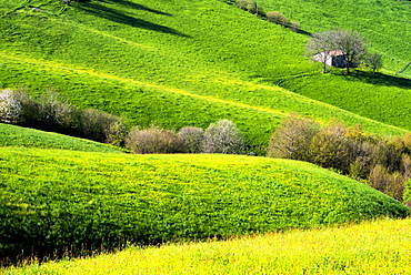 Hills of Bergamo in spring, Bergamo province, Lombardy district, Italy, Europe