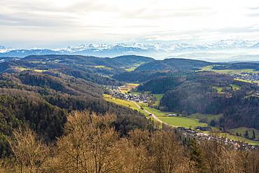 View of fields around Zurich with the Alps in the background from Uetliberg, Zurich, Switzerland, Europe