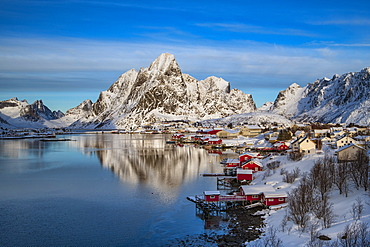 Reine fishing village in winter, Reinefjord, Moskenesoya, Lofoten, Arctic, Norway, Europe