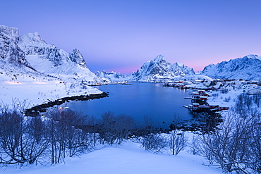 Sunrise at Fishing village Reine in winter, Reinefjord, Moskenesoya, Lofoten, Arctic, Norway, Europe