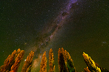 The Milky Way above Piedra Parada, Chubut Province, Patagonia, Argentina, South America