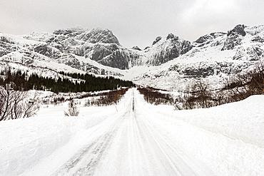 Snow covered road in arctic winter conditions, Lofoten, Nordland, Arctic, Norway, Europe