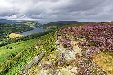 Bamford Edge with heather overlooking Ladybower reservoir, Bamford, Derbyshire, England, United Kingdom, Europe