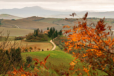 Podere Belvedere and Tuscan countryside at dawn near San Quirico d'Orcia, Tuscany, Italy, Europe