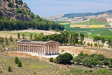 Magnificent Doric temple amongst rolling hills at the ancient Greek city of Segesta, Calatafimi, Trapani, Sicily, Italy, Mediterranean, Europe