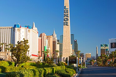 View along The Strip, early morning, replica Egyptian obelisk outside the Luxor Hotel and Casino, Las Vegas, Nevada, United States of America, North America