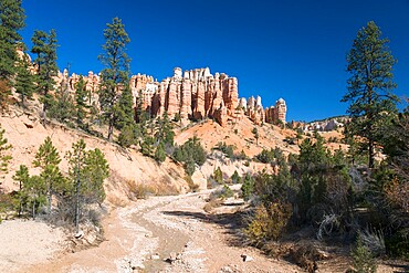 View to typical rock hoodoos from the Mossy Cave Trail, Water Canyon, Bryce Canyon National Park, Utah, USA