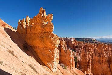 Colourful rock formation in the Queen's Garden beside the Navajo Loop Trail, Bryce Canyon National Park, Utah, United States of America, North America
