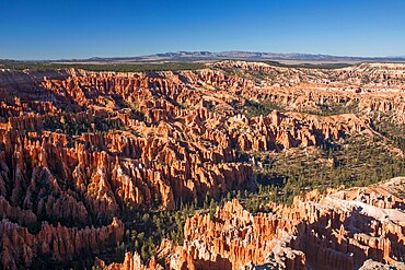 View over Bryce Amphitheatre from the Rim Trail at Bryce Point, Bryce Canyon National Park, Utah, United States of America, North America