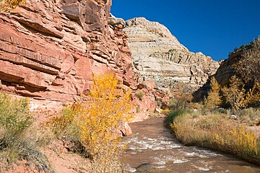 View along the Fremont River to Capitol Dome from the Hickman Bridge Trail, Fruita, Capitol Reef National Park, Utah, United States of America, North America