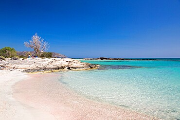 View across clear turquoise waters from pink sand beach, Elafonisi Island, Elafonisi, Hania (Chania), Crete, Greek Islands, Greece, Europe