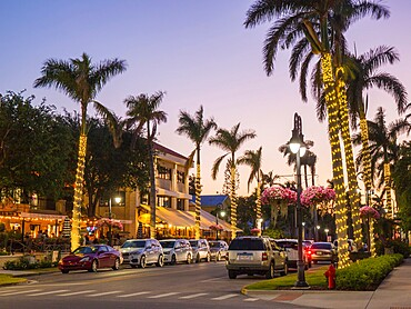 View along palm-lined 13th Avenue South in the heart of the city's premier dining district, dusk, Naples, Florida, United States of America, North America