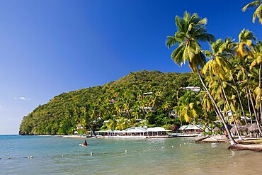 The Caribbean Sea off LaBas Beach, coconut palms at water's edge, Marigot Bay, Castries, St. Lucia, Windward Islands, Lesser Antilles, West Indies, Caribbean, Central America