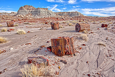 Shattered pieces of petrified wood in a sandy wash in the Jasper Forest of Petrified Forest National Park, Arizona, United States of America, North America