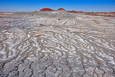 Salt covered hills of Bentonite in the Petrified Forest National Park along the Blue Forest Trail, Arizona, United States of America, North America