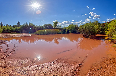 Toxic pond formed from runoff of mine tailings at an abandoned copper mine in the Prescott National Forest near Perkinsville, Arizona, United States of America, North America