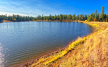 Northeast Shoreline view of White Horse Lake near Williams, located within the Kaibab National Forest, Arizona, United States of America, North America
