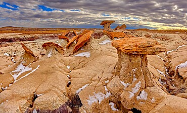 Sand Castle formations on the edge of the Red Basin in Petrified Forest National Park, Arizona, United States of America, North America