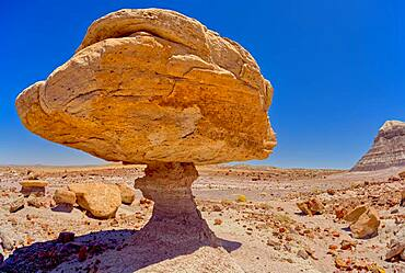 Balanced rock that resembles a toadstool, petrified wood scattered around the formation, Petrified Forest National Park, Arizona, United States of America, North America