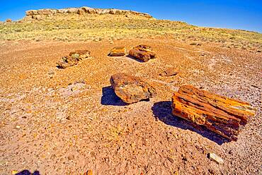 Formation called Agate Mesa, viewed from a group of petrified wood in the foreground, Petrified Forest National Park, Arizona, United States of America, North America