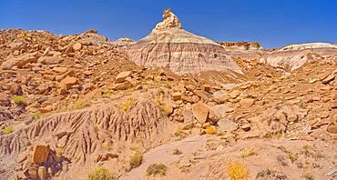 A rock hoodoo along the base of Blue Mesa in Petrified Forest National Park Arizona shaped like a horse head.