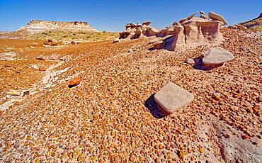 An eroded sandstone formation below the Blue Mesa in Petrified Forest National Park Arizona called a Sandcastle.