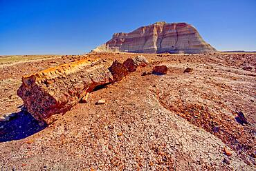 A Bentonite formation in Petrified Forest National Park near Crystal Forest called the Battleship, Arizona, United States of America, North America