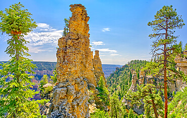 Large rock spires on the cliff of Transept Canyon along the Widforss Trail at Grand Canyon North Rim Arizona.