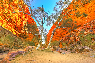Scenic Simpsons Gap and permanent vegetation in West MacDonnell Ranges, near Alice Springs on Larapinta Trail in winter season, Northern Territory, Central Australia, Pacific