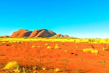 The domed rock formations of Kata Tjuta (Mount Olgas) in Uluru-Kata Tjuta National Park, UNESCO World Heritage Site, Northern Territory, Central Australia, Pacific