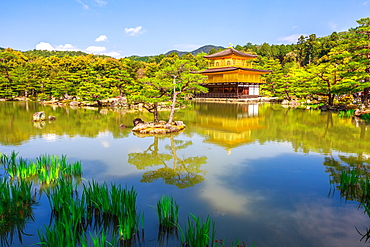 Kinkaku-ji (Golden Pavilion) (Rokuon-ji), Zen Buddhist temple, reflected in the lake surrounded by a scenic park, UNESCO World Heritage Site, Kyoto, Japan, Asia