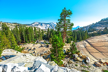 Panorama of Olmsted Point, off Tioga Pass Road in Yosemite National Park, UNESCO World Heritage Site, California, United States of America, North America