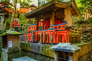 Fushimi Inari Taisha, the most important Shinto shrine, famous for its thousand red torii gates, Kyoto, Japan, Asia