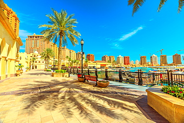 Palm trees along luxury marina corniche walkway promenade in Porto Arabia at the Pearl-Qatar, residential skyscrapers in the background, Persian Gulf, Doha, Qatar, Middle East