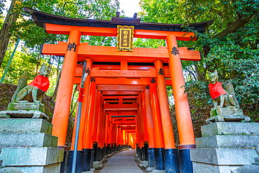 Thousand vermilion torii gates of the Shinto sanctuary of Fushimi Inari Taisha, south of Kyoto, Japan, Asia
