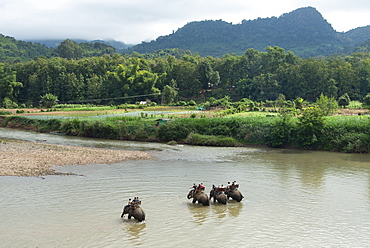 Riding Asian elephants near Luang Prabang, Laos, Indochina, Southeast Asia, Asia
