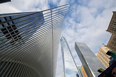 Oculus building and high rises in Lower Manhattan, the Oculus is a train station at the World Trade Center site, New York City, New York, United States of America, North America