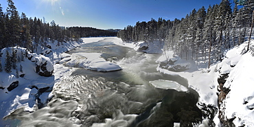 Yellowstone River, Montana, United States of America, North America