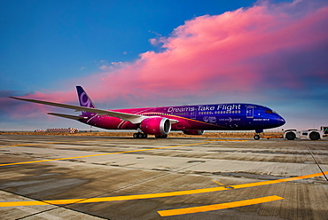 Boeing 787 Dreamliner in special livery Dreams Take Flight, Dubai, United Arab Emirates, Middle East