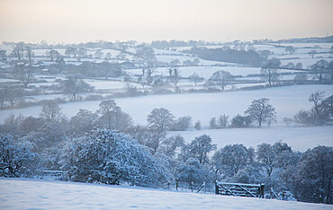 Snow covered landscape, near Almscliff Crag, Wharfe Valley, North Yorkshire, England, United Kingdom, Europe