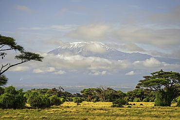Mount Kilimanjaro from Amboseli National Park, Kenya.