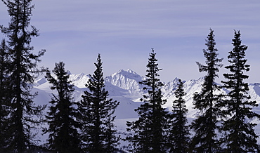 The snowy mountain ranges of Denali National Park in the winter, Alaska, United States of America, North America