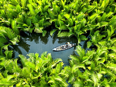 Fisherman fishing in the middle of nipa palm forest, Quang Ngai, Vietnam, Indochina, Southeast Asia, Asia